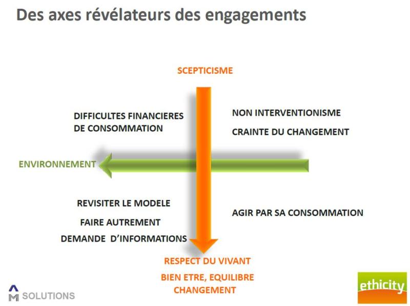 Typo ethicity axes